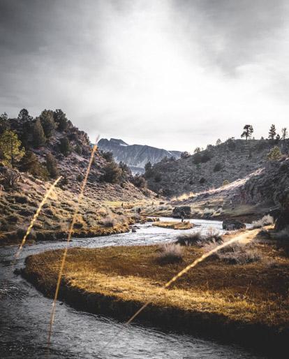 נהרות מחשבים מסלול מחדש [כתבה]