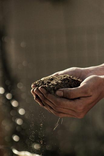 כשהגשם סוחף את הקרקע איתו [כתבה]